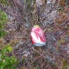 Litter at the Fairy pools
